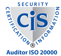 auditor-iso-20000-23